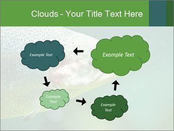 0000084361 PowerPoint Template - Slide 72