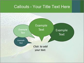 0000084361 PowerPoint Template - Slide 73