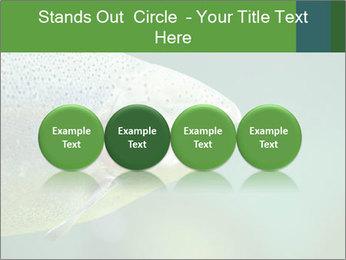 0000084361 PowerPoint Template - Slide 76