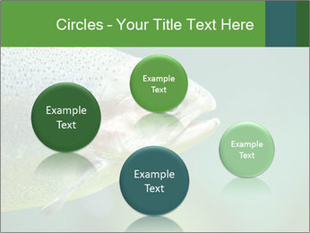 0000084361 PowerPoint Template - Slide 77