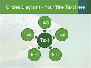 0000084361 PowerPoint Template - Slide 78