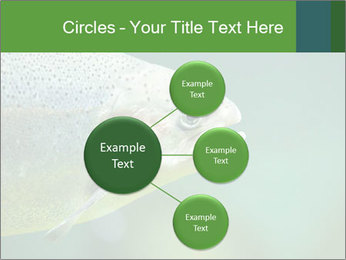 0000084361 PowerPoint Template - Slide 79