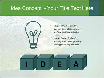 0000084361 PowerPoint Template - Slide 80