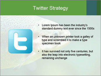 0000084361 PowerPoint Template - Slide 9