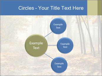 0000084363 PowerPoint Template - Slide 79