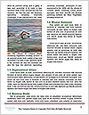 0000084366 Word Templates - Page 4