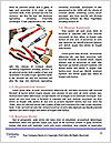 0000084374 Word Templates - Page 4