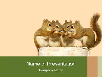 0000084375 PowerPoint Template