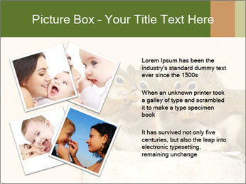 0000084375 PowerPoint Templates - Slide 23