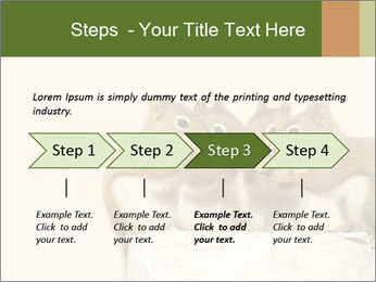 0000084375 PowerPoint Template - Slide 4