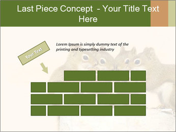0000084375 PowerPoint Template - Slide 46