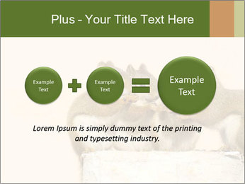 0000084375 PowerPoint Template - Slide 75