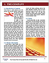 0000084377 Word Template - Page 3