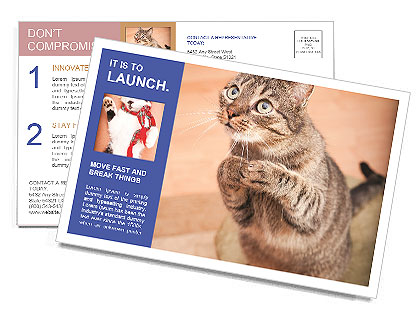 0000084386 Postcard Template