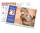 0000084386 Postcard Templates