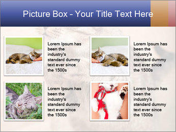 0000084386 PowerPoint Templates - Slide 14