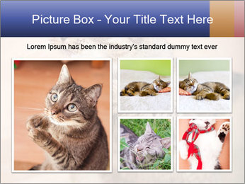 0000084386 PowerPoint Templates - Slide 19