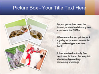 0000084386 PowerPoint Templates - Slide 23