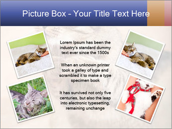 0000084386 PowerPoint Templates - Slide 24