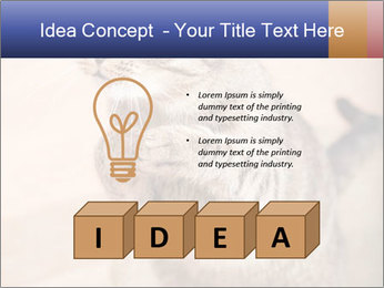 0000084386 PowerPoint Templates - Slide 80
