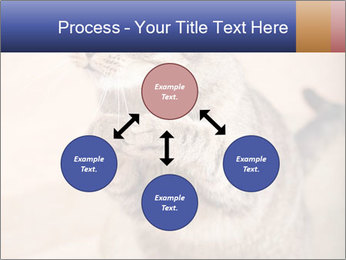 0000084386 PowerPoint Templates - Slide 91