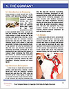0000084386 Word Template - Page 3