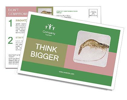 0000084393 Postcard Templates