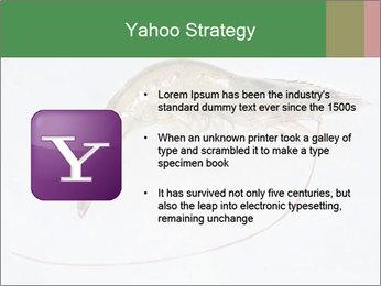 0000084393 PowerPoint Template - Slide 11