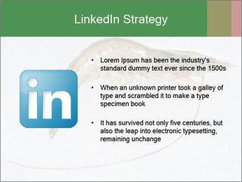 0000084393 PowerPoint Template - Slide 12