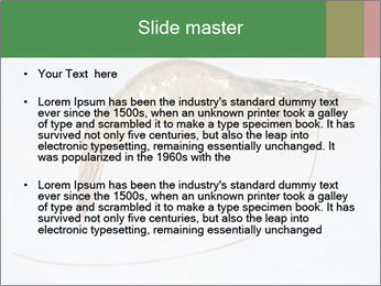 0000084393 PowerPoint Templates - Slide 2