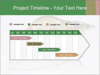 0000084393 PowerPoint Template - Slide 25