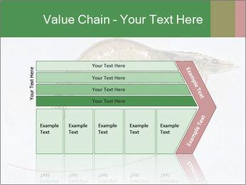 0000084393 PowerPoint Template - Slide 27