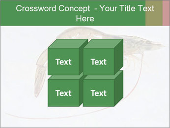 0000084393 PowerPoint Template - Slide 39