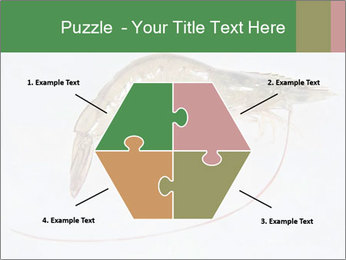 0000084393 PowerPoint Templates - Slide 40
