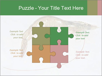 0000084393 PowerPoint Templates - Slide 43