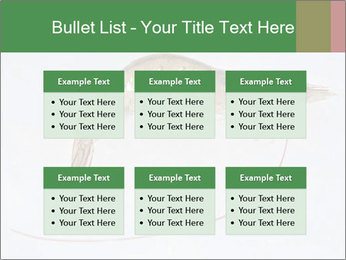0000084393 PowerPoint Templates - Slide 56