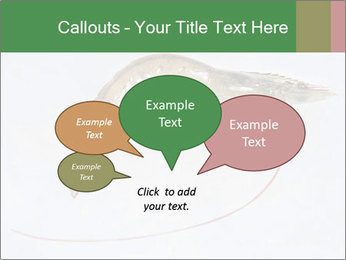 0000084393 PowerPoint Templates - Slide 73