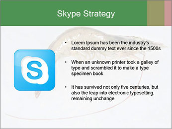 0000084393 PowerPoint Templates - Slide 8