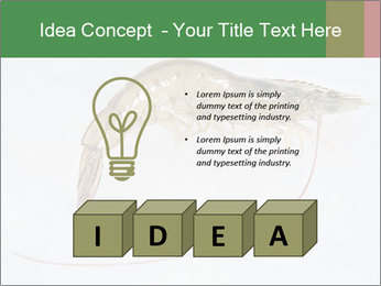 0000084393 PowerPoint Templates - Slide 80