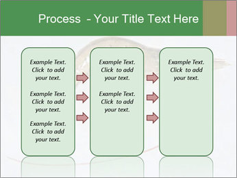 0000084393 PowerPoint Template - Slide 86