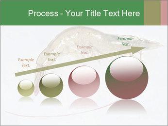 0000084393 PowerPoint Template - Slide 87