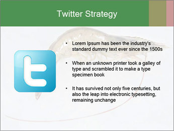 0000084393 PowerPoint Template - Slide 9