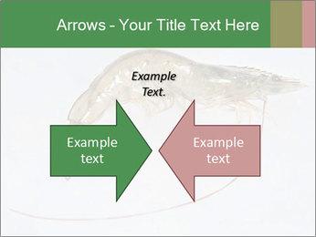 0000084393 PowerPoint Template - Slide 90