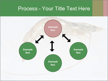 0000084393 PowerPoint Templates - Slide 91