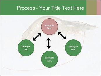 0000084393 PowerPoint Template - Slide 91