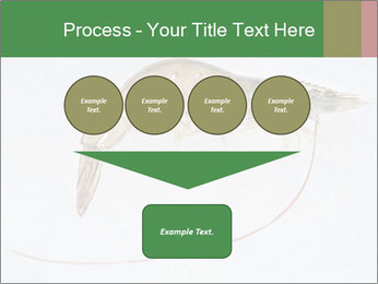 0000084393 PowerPoint Templates - Slide 93