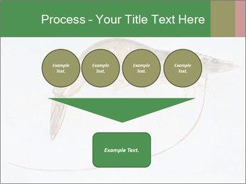 0000084393 PowerPoint Template - Slide 93