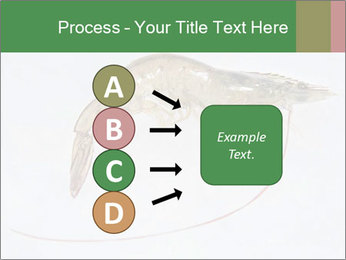 0000084393 PowerPoint Templates - Slide 94