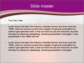 0000084394 PowerPoint Templates - Slide 2