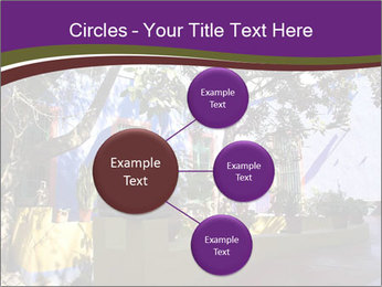 0000084399 PowerPoint Templates - Slide 79